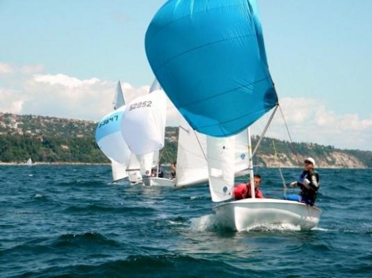 regata (550x411)