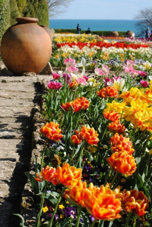 botanic_garden(301x450)