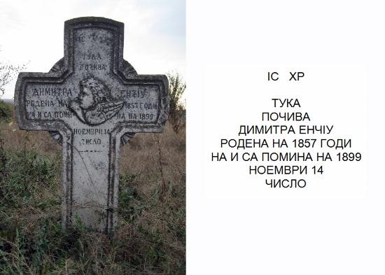TIMG_0039 (550x393)