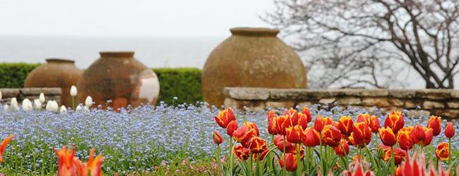 Резултат с изображение за ботаническа градина балчик лалета